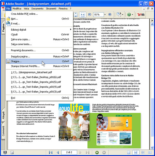 print to pdf on acrobat pdf
